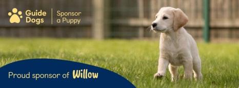 C:\Users\uksjm008\Downloads\Willow Facebook cover.jpg
